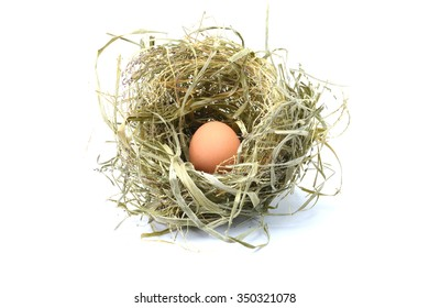 Close up of egg in bird nest on white background