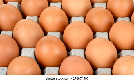 Close up egg in packet background texture.