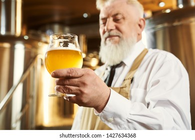 Close up of elderly brewer in white shirt and brown apron holding glass with light craft beer. Professional worker examining beer on factory with modern equipment. Concept of modern technology.