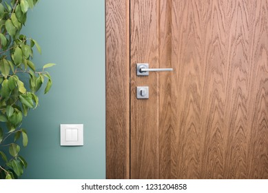 Close - up elements of the interior of a beautiful apartment. Steel door handle and dark wood. Green wall and white switch
