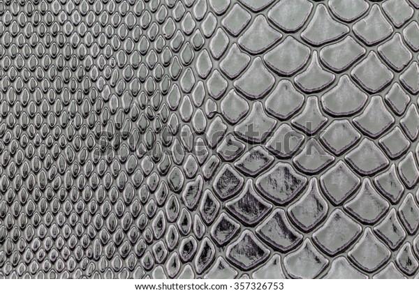 Close Exotic Snakeskin Pattern Wallpaper Animals Wildlife