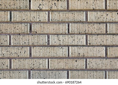 Close Up of an Exterior Wall of Beige Bricks with Ridges