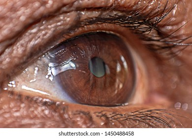 Close of eye of middle age woman