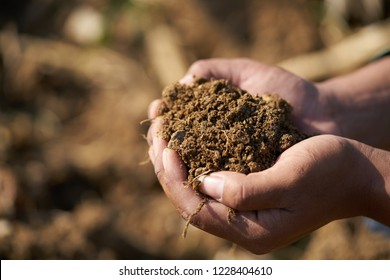 Close up of the farmer hands  holding a rich fertile soil