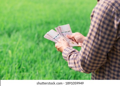 Close up farmer man counting Thai banknote money with a green rice farm.
