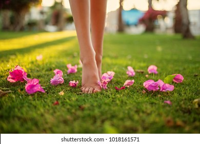 Close up female crossed legs walking on the grass,pink flowers on the grass.