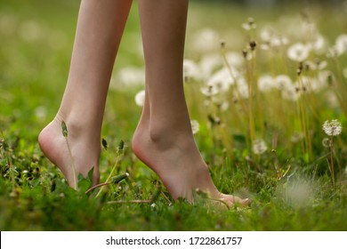 Close up female crossed legs walking on the grass and dandelion. Spring and summer vibes nature.