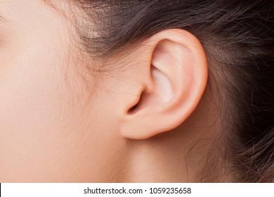 Close up of Female Ear. hearing - ear close-up - Image