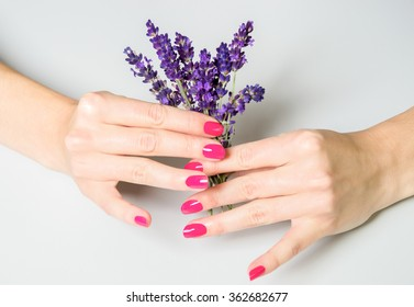 Close Up of Female Hands Wearing Bright Pink Polish on Nails and Holding Small Bundle of Fresh Lavender with Purple Flowers on White Background with Copy Space - Spa Image