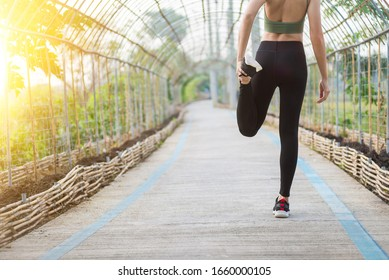 Close up of female legs with running shoes on the road. Nature and sport healthy lifestyle concept.