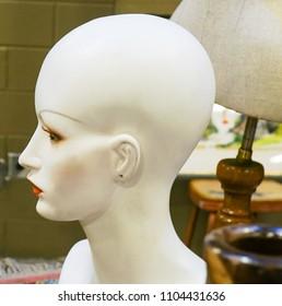 Close up of a Female Plastic Mannequin Head