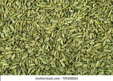 close up fennel seed texture background