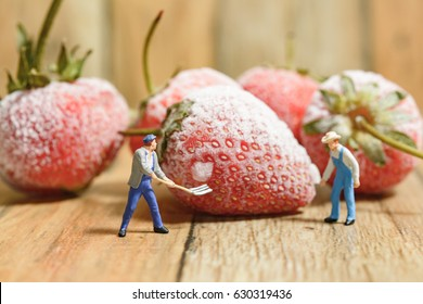close up figure Miniature people farmer working with ice strawberry fruit nature on wood background. selective focus
