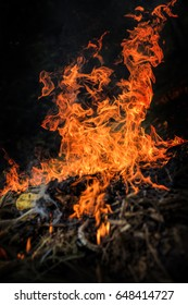 Close up of fire flames, selective focus.