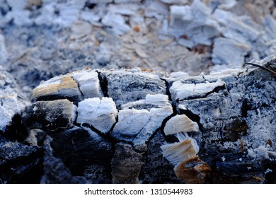 close up of The fire is gone Left ashes and stumps burn,Coals in an extinct fire.