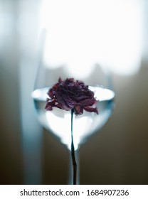 Close up flower with a wineglass on the background. Creative high quality photo for decorations in green tones