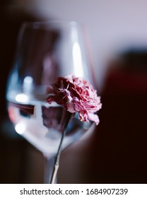 Close up flower with a wineglass on the background. Creative high quality photo for decorations in pink tones