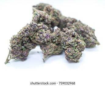 Close up of Forbidden Fruit Marijuana Cannabis Bud Isolated on White Background