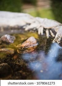 close up of fountain in italian garden