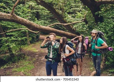 CLose up of four best friends, walking in autumn  forest, amazed by the beauty of nature, wearing comfortable outfits for hiking, looking far, exploring jungle trails