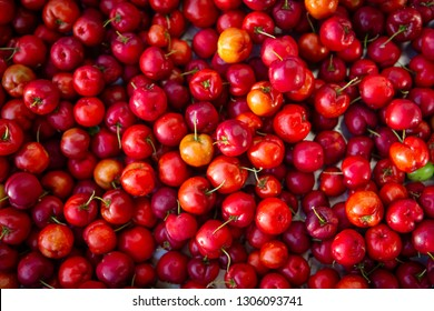 "Close up of fresh ""Acerola"" cherry fruits. The acerola juice contains 40 to 80 times more vitamin ""C"" than lemon or orange juice."