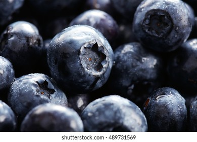 Close up of fresh Blueberries with waterdrops