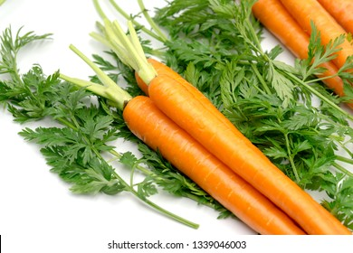 close up fresh carrots top view