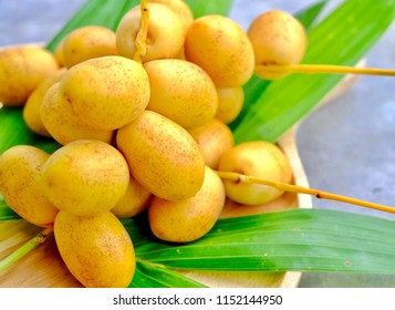 Close up fresh dates palm fruit on wooden plate, Barhi or Barhee dates are a rich source of fiber, iron, potassium, B-vitamins, flavonoids and antioxidants. The taste is crispy and sweet.