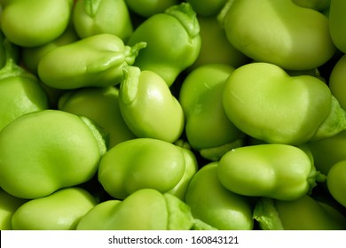 A close up of fresh green broad beans.