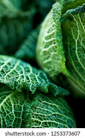 Close up of a fresh green cabbage