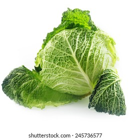 Close up Fresh Green savoy Cabbage Vegetable, with Textured Leaves, Isolated on White Background
