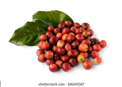 Close up of fresh raw coffee beans isolated on white background, selective focus.