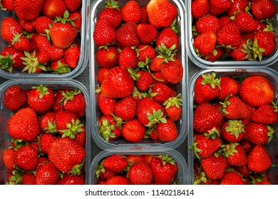Close up of fresh red ripe strawberries in transparent plastic container boxes on retail market display, high angle view