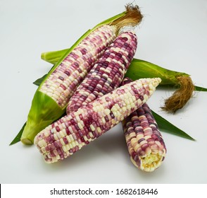 close up fresh ripe colorful corn white green leaves isolated on white background, ploy siam, sweet wax corn