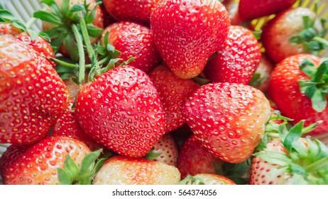 Close up of fresh strawberry - Food frame background