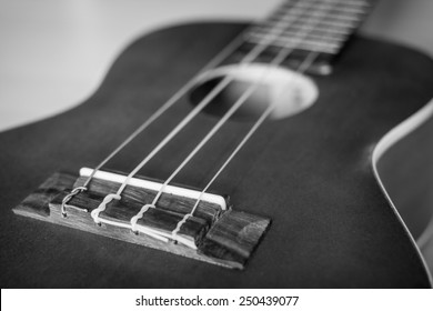 Close up at the front of Ukulele in black and white style