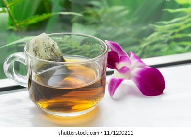 Close up glass of hot tea on wood table with green nature background