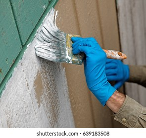 Close up of gloved hand priming the wall.