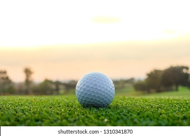close up the golf ball on the green background
