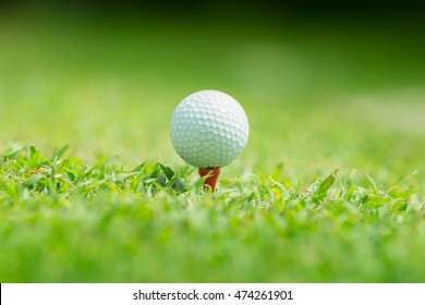 Close up of golf ball on tee,Golf sport is Balance of Yin Yang.Paste the text into the space  right hand side
