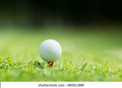 Close up of golf ball on tee,Golf sport is Balance of Yin Yang.copy space for put text copy space for put text