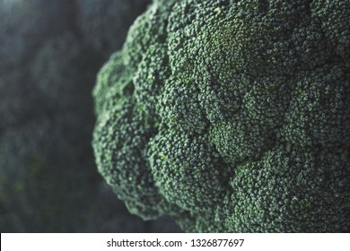 Close up of green broccoli heads
