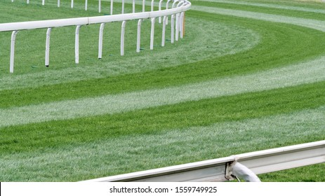 Close up of the green grass field in horse racing racetrack in Shatin, Hong Kong.