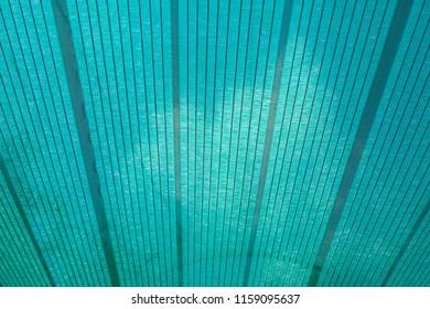Close up green shading net