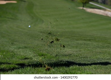Close up of green tufts of grass flying through the air after being hidden with a golf club. The white golf ball is flying, too, out of focus. Green meadow foreground and background. No persons.