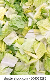close up of green and white chopped lettuce