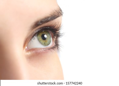 Close up of a green woman eye isolated on a white background