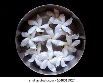 Close up of group of Crape Jasmine, East India rosebay having five white petals & yellow central part arranged in symmetrical & circular fashion in a metal cup on a black background and shot from top