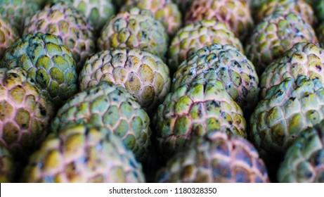Close up group of fresh organic green Custard apple tropical fruit (Sugar Apple, Annona, sweetsop), Fresh sweet nutrition fruits.