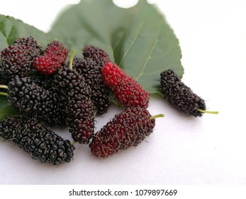 Close up group of mulberries and green leaf on isolated white background . Mulberry this a fruit and can be eaten. Mulberry is delicious and sweet nature.
